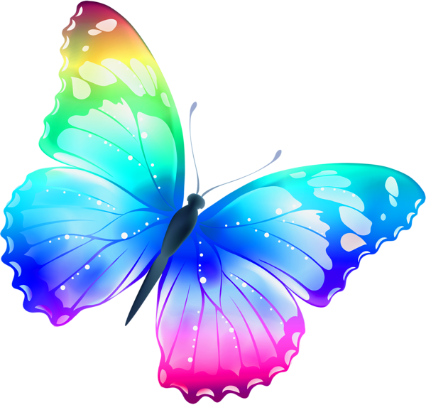 Papillon multicolore ornaments pinterest papillon - Dessin papillons ...