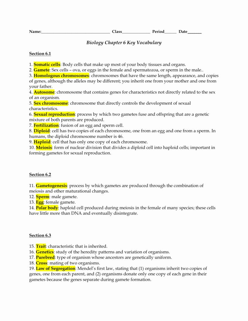 50 Meiosis Worksheet Vocabulary Answers In 2020 With Images