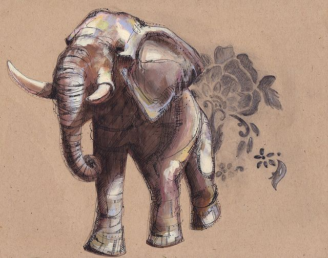 Asian Elephant | Flickr - Photo Sharing!