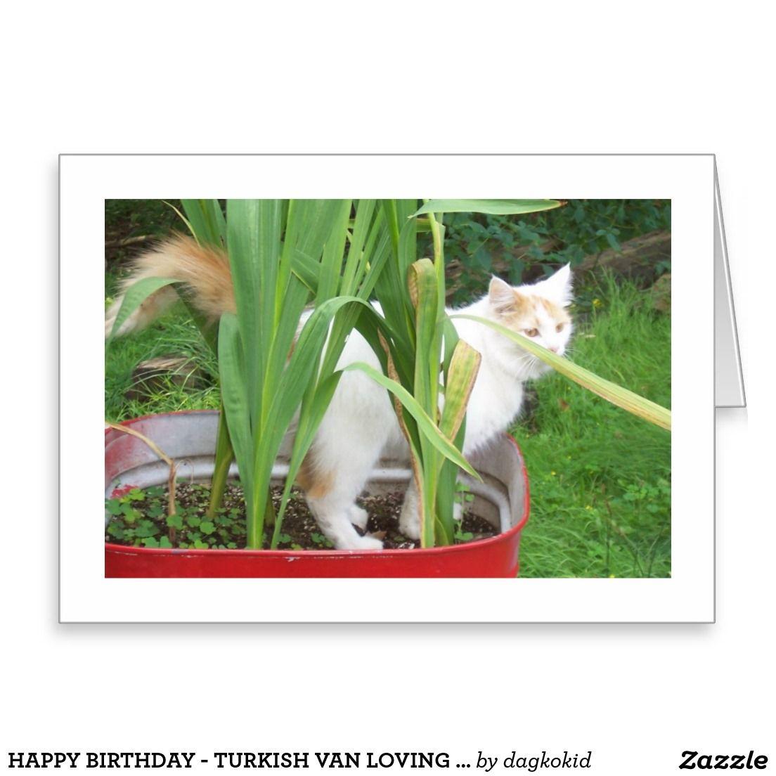 Happy birthday turkish van loving wishes card greeting cards