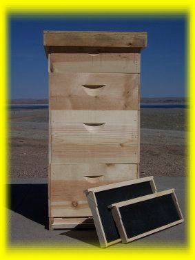 Bee Hive Plans: Here is a complete set of very detailed plans to affordably make your very own 8 or 10 frame Langstroth style bee hive with frames. ($6.75)