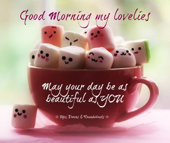 Good Morning My Lovelies May Your Day Be As Beautiful As