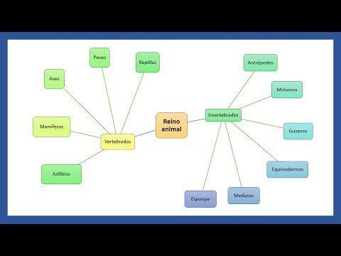 Word Crear Un Mapa Mental Brainstorming En Word Tutorial En Español Hd Mapa Mental Mapas Mapa Conceptual