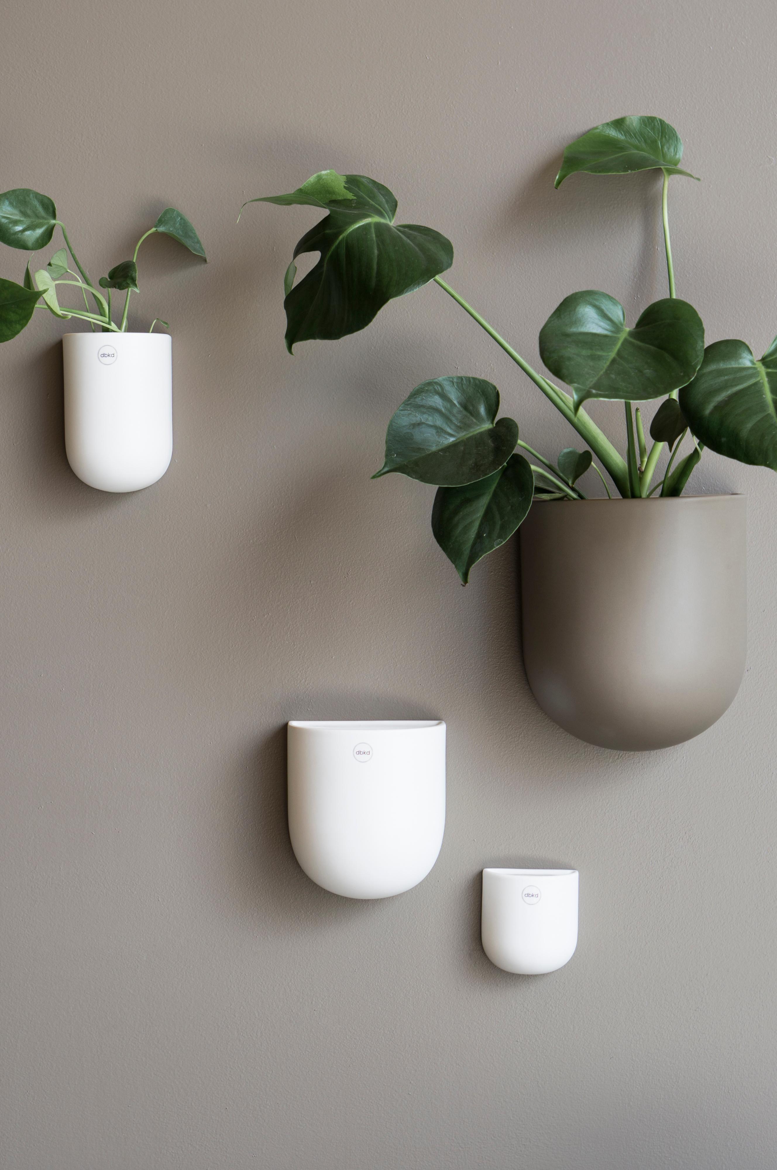 596ca8943dd1 Väggkruka CUT XL i 2019   Nytt hus ideer   Planters, Planter pots ...