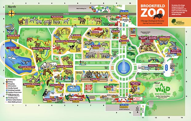 Chicago Zoological Society Zoo Map Trip to Chicago Pinterest