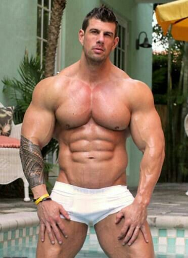 Stud mounts muscular lover