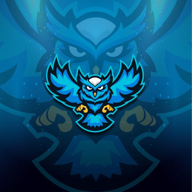 Blue Owl Logo Esport