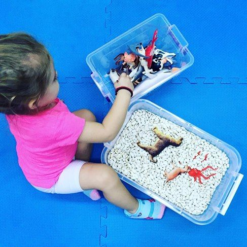 If a child can't learn the way we teach, maybe we should teach the way they learn #logocare_ #speechtherapy #occupationaltherapy #sensorytoys #sensoryplay #5senses #learning #preschool #havingfun #vocabulary