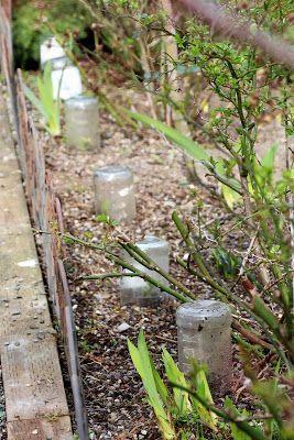 Cottage Garden 2/26/2016 propagating Boxwoods