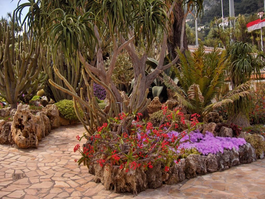 The Exotic Garden Of Monaco Garden Cool Places To Visit Plants