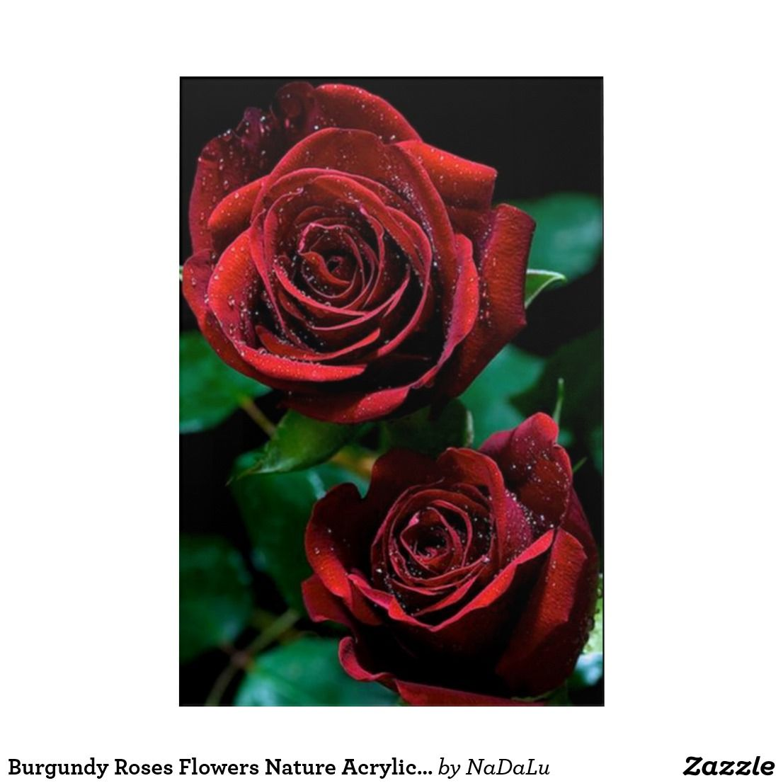 Burgundy roses flowers nature acrylic wall art red roses