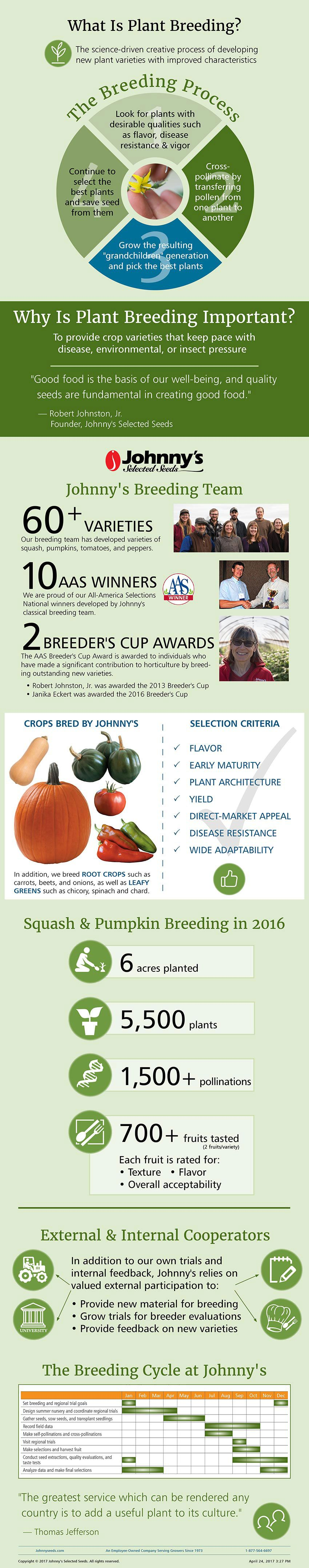 plant breeding at johnny u0027s selected seeds infographic