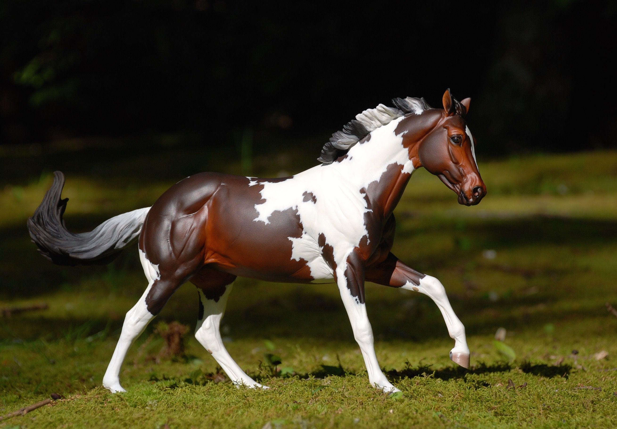 картинки лошадей брейер на природе доставкой тамбов