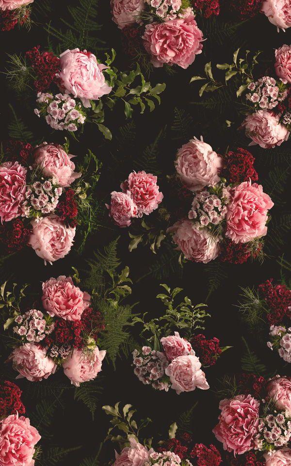 Pink Black Dark Moody Floral Pattern Wallpaper Mural Hovia Uk Flower Aesthetic Floral Wallpaper Iphone Flower Phone Wallpaper Black floral wallpaper uk