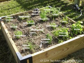 How Deep Should A Raised Garden Bed Be The Gardens