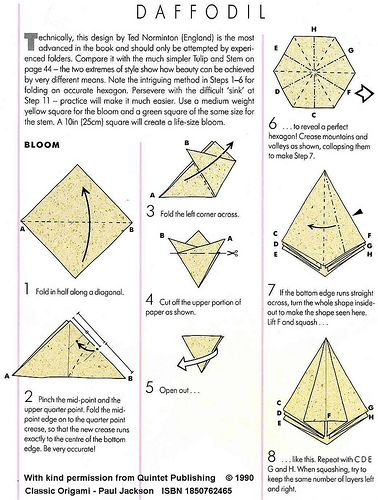 Magnificent Origami Daffodil Page 1 Origami Origami Origami Flowers Diy Wiring Digital Resources Dadeaprontobusorg