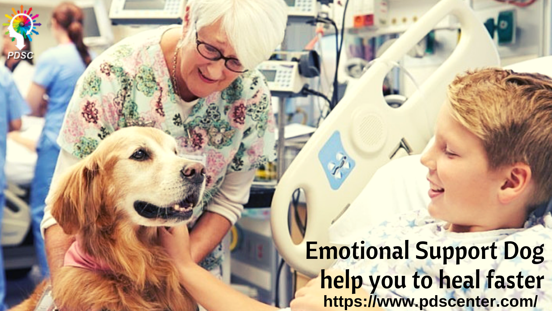 An Emotional Support Animal Or Esa Is An Animal That Provides