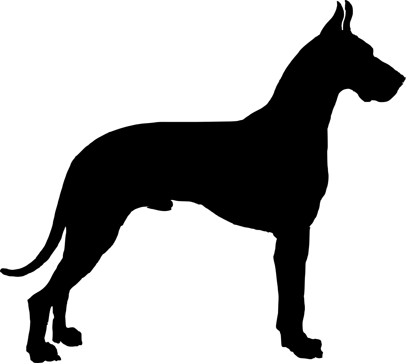 Silhouettes Xl Animal Silhouette Dog Silhouette Dog Drawing