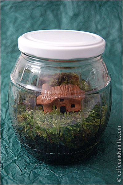 how to make garden in a jar