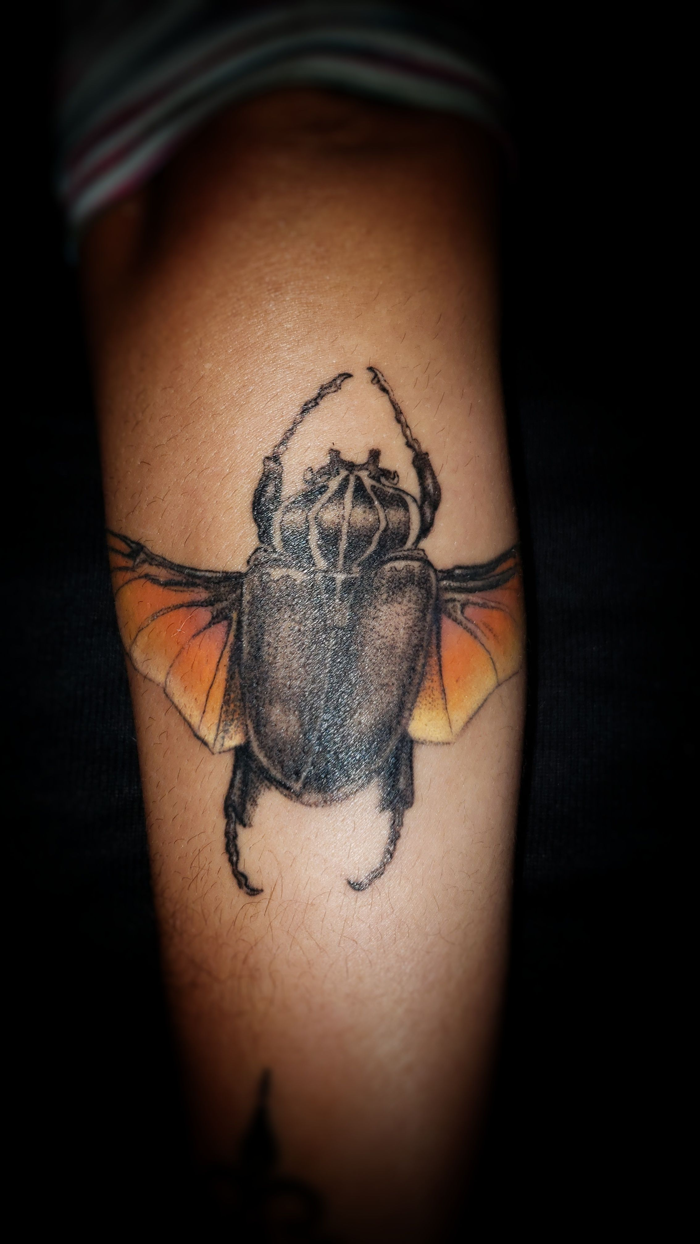 Bettle by Ramón Villalobos San José Costa Rica tattoos