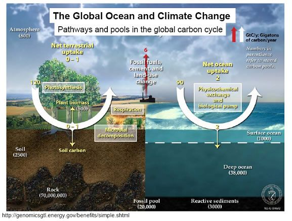 The global ocean and climage change climate change pinterest climate change is the increasing average annual global temperature and is caused by the build up of unnatural amounts of greenhouse gases ghg sciox Images