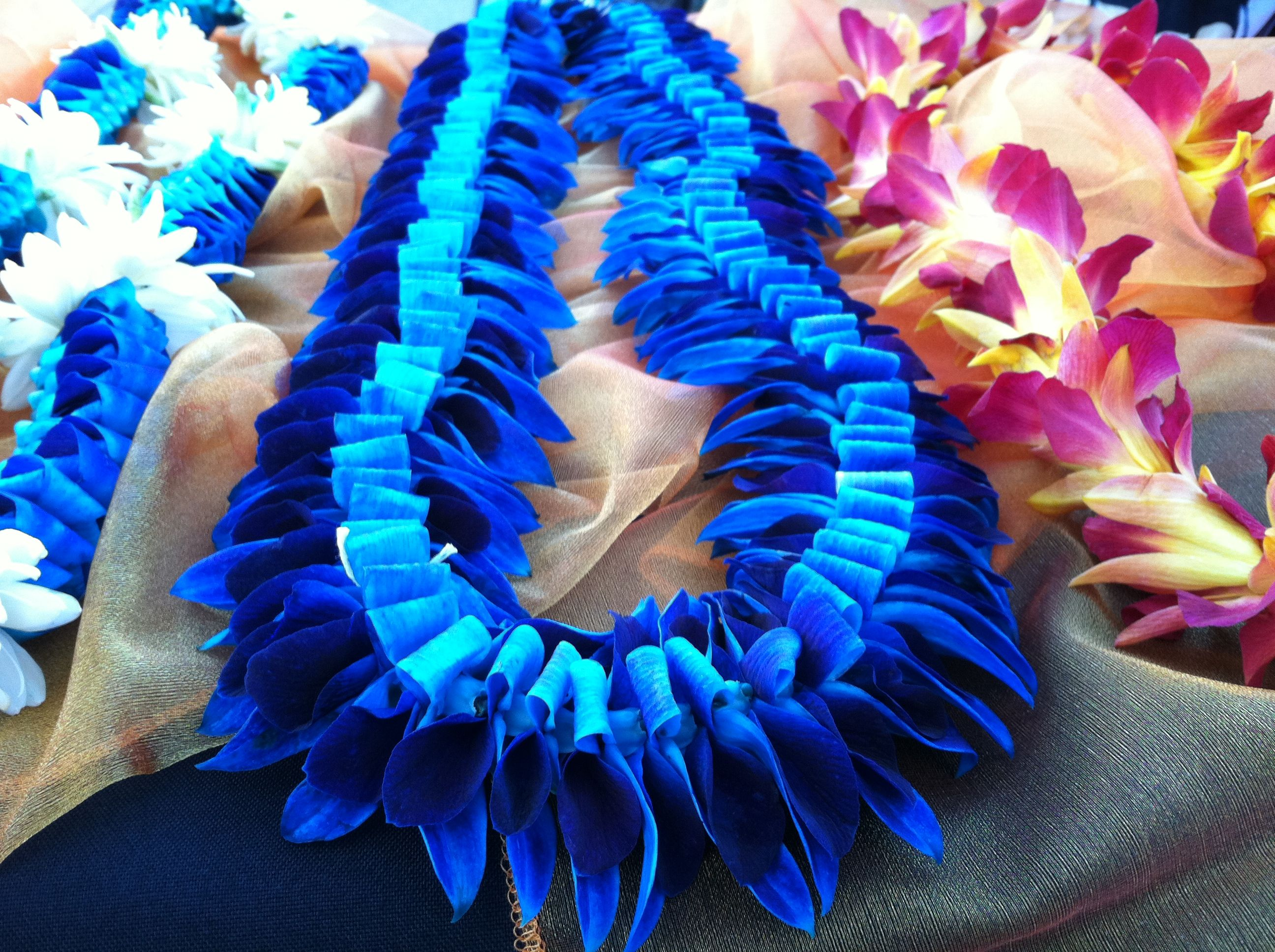 Specialty Blue Orchid Lei Cost 45 Orchid Lei Blue Orchids Kanzashi Flowers