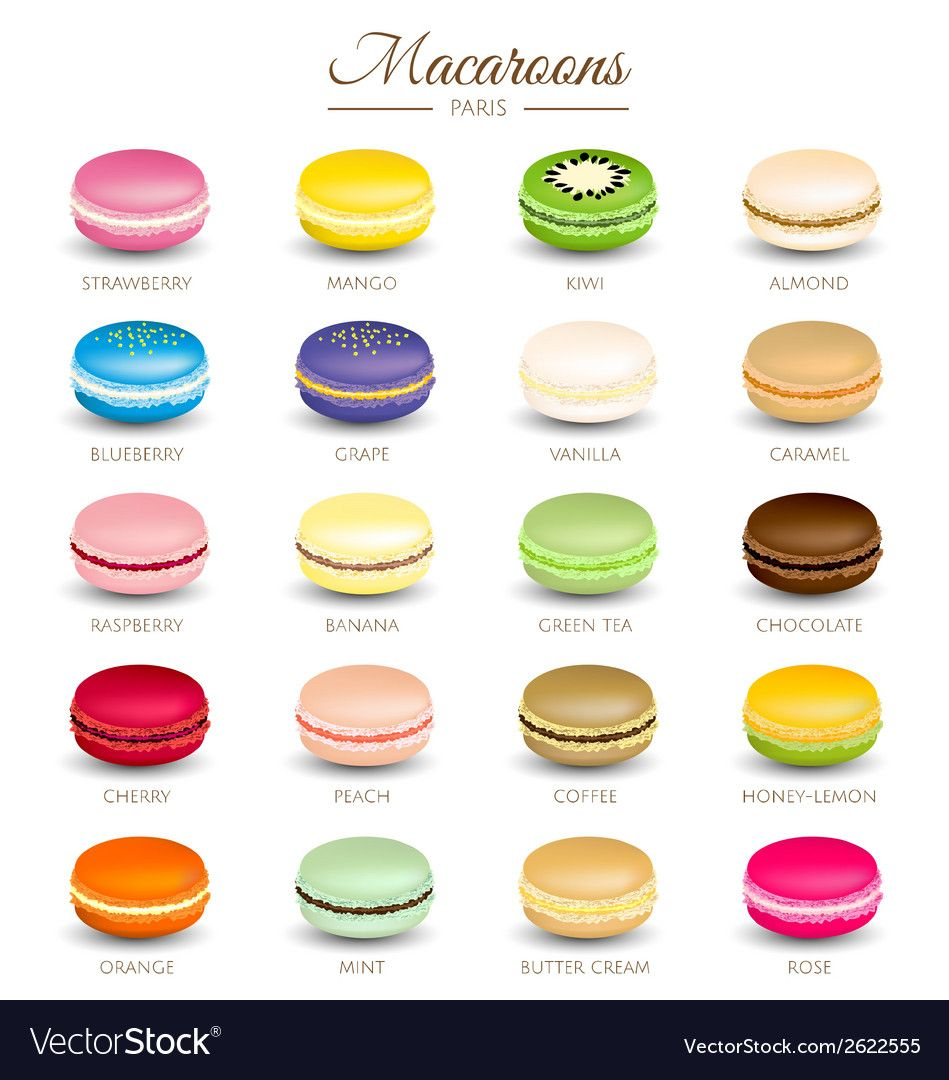 Colorful macaroons flavors vector image on VectorStock