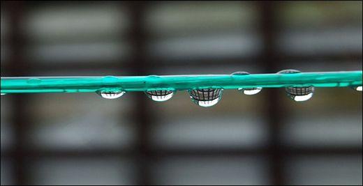 rainphoto_02.jpg