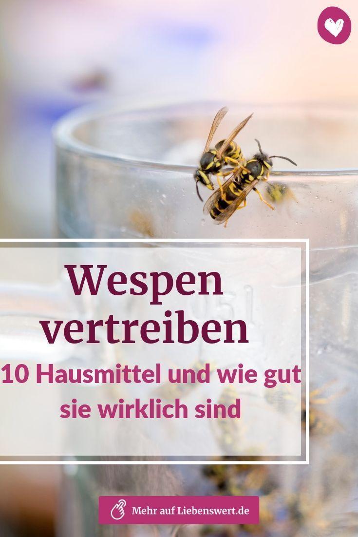 Wespen Vertreiben 10 Hausmittel Und Wie Gut Sie Wirklich Sind Wespen Vertreiben Hausmittel Hausmittel Gegen Wespen