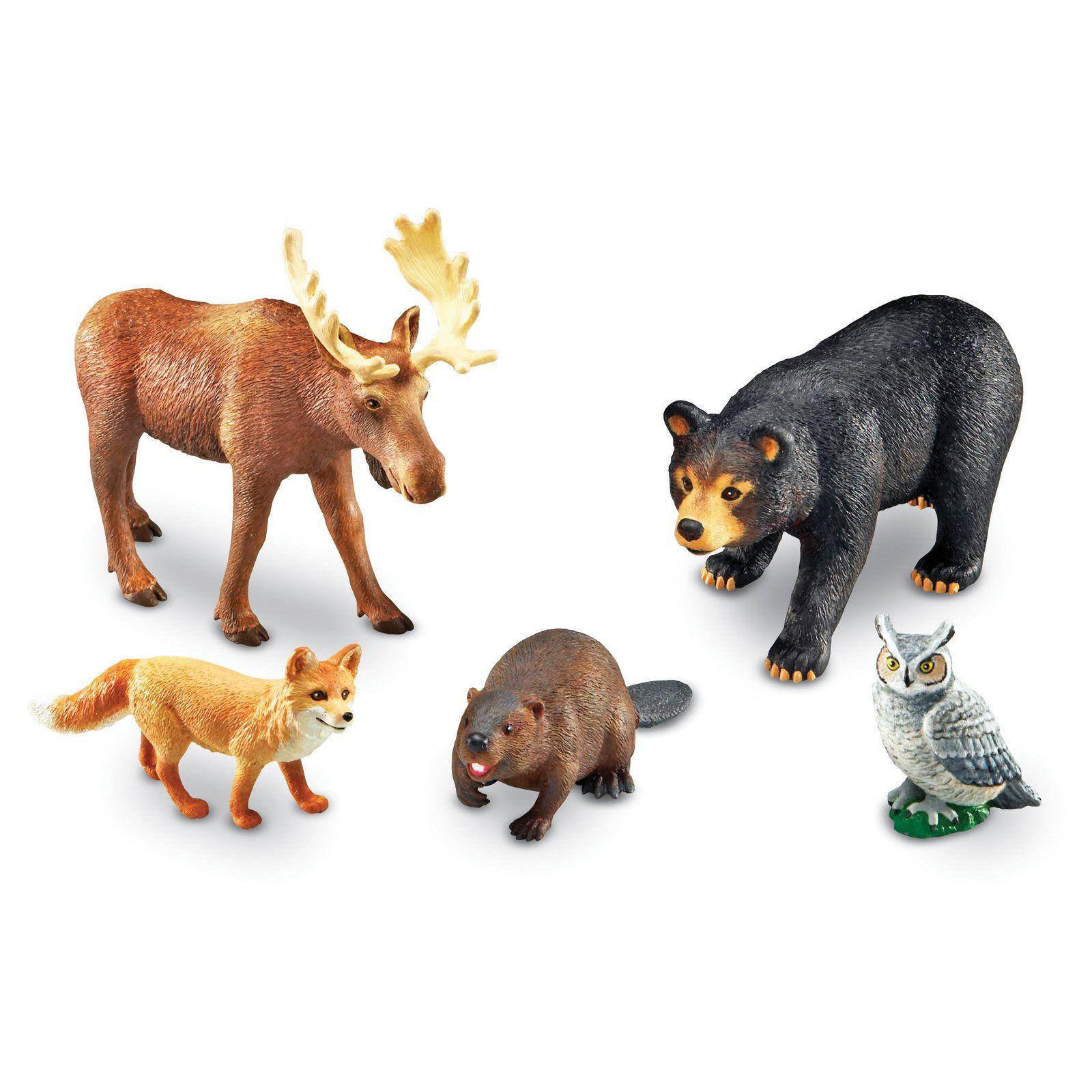 листья картинки игрушки животные россии отель приморский, фото