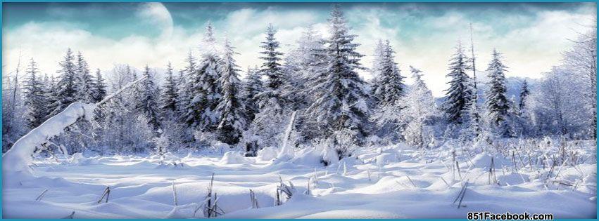 Winter Wonderland | Christmas | Pinterest | Facebook ...