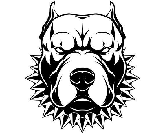 Pitbull Pit Bull Terrier Dog Cartoon Svggraphicsillustration