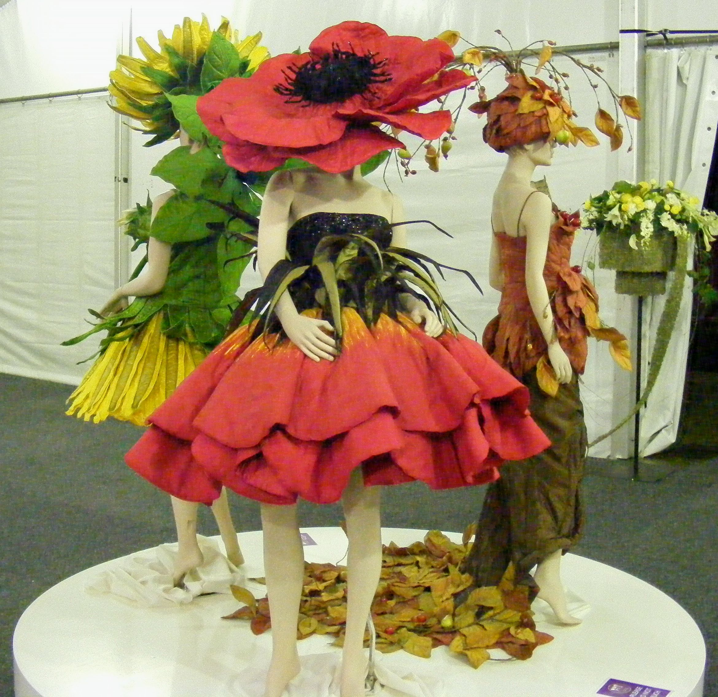 World of Wearable Art all the world s my stage Pinterest