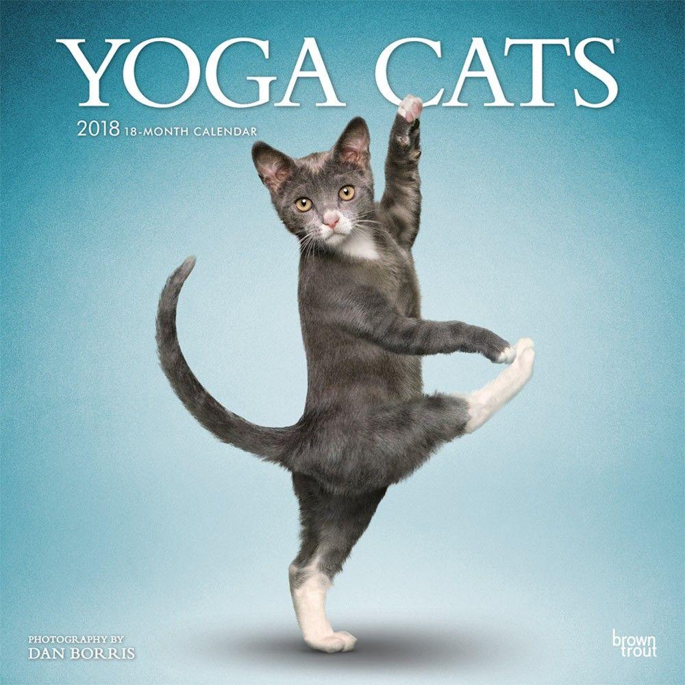 Yoga Cats 2018 12 X 12 Inch Monthly Square Wall Calendar Isbn 978 1 4650 8832 1 Modelos De Croche Yoga