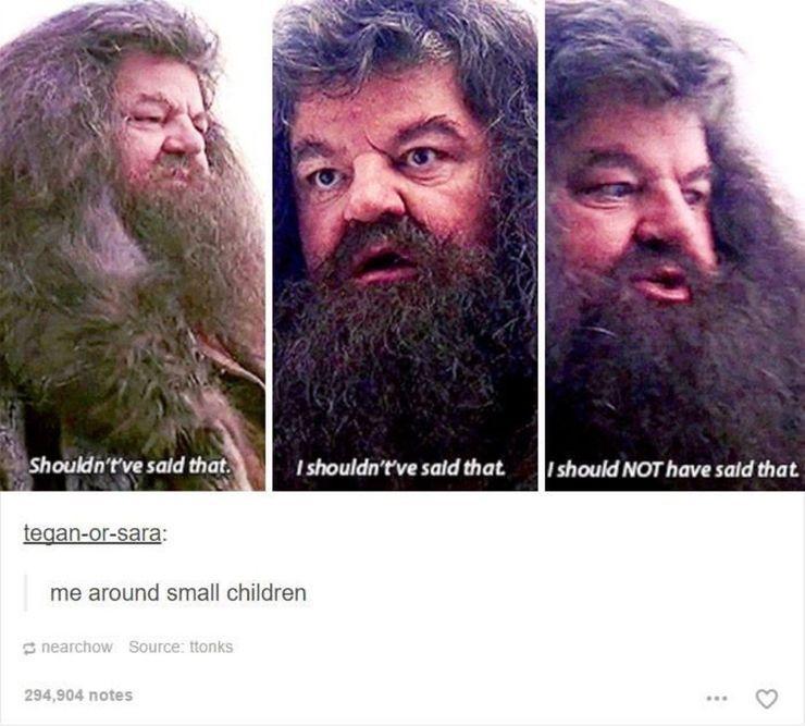 10 Harry Potter Memes That Prove Hagrid Was The Funniest Hagrid Rubeus Hagrid Harry