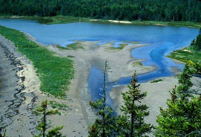 Jasper Beach backed by fresh and saltwater lagoons and a salt marsh.