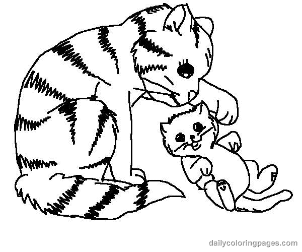Cat color pages printable cute cat coloring pages 003