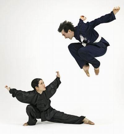Kung Fu Eagle Style wushu stances  ...