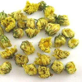 Chrysanthemum Bud Tea Teacuppa Com Chrysanthemum Tea Flower Tea Chrysanthemum