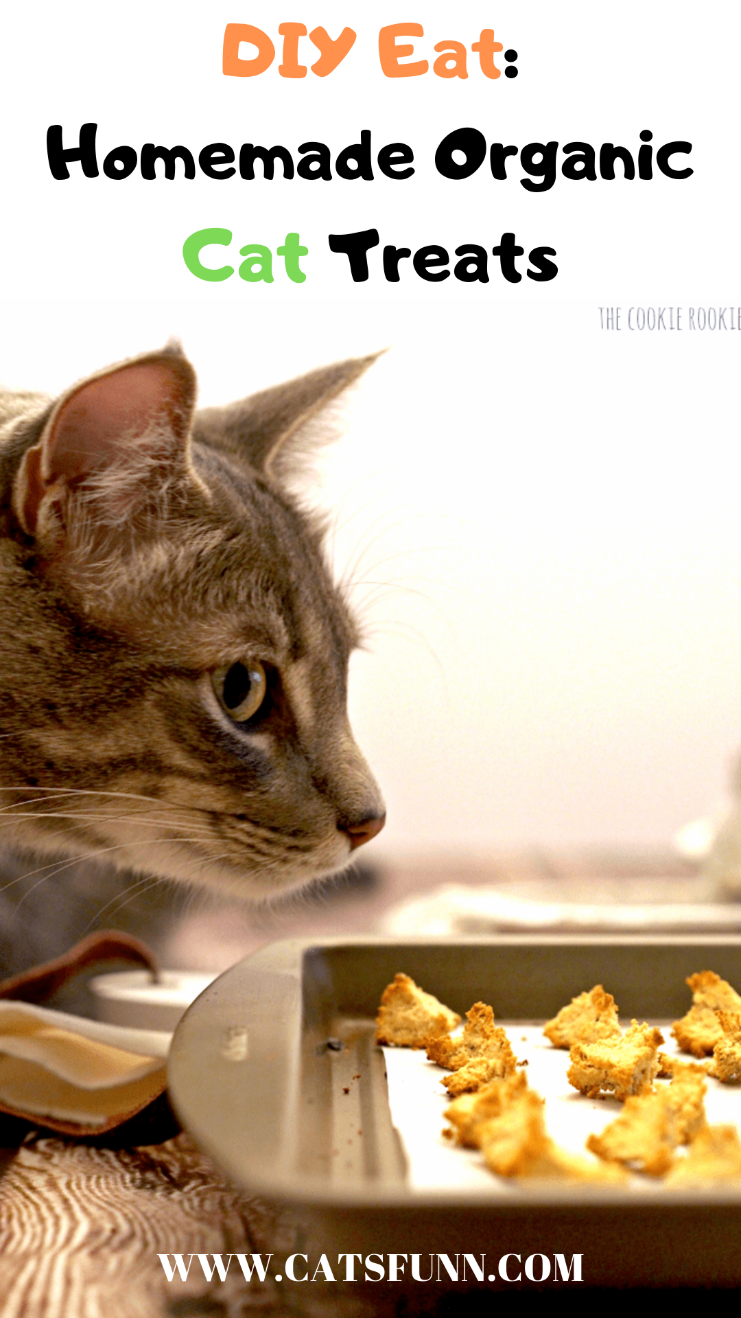 9 Purrfect Homemade Treats For Your Cat in 2020 Homemade