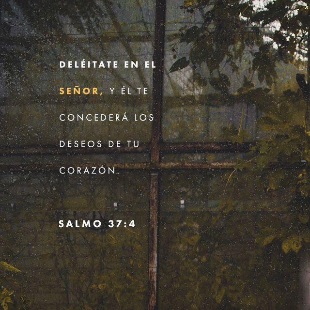 Entrégale a Dios tu amor, y él te dará lo que más deseas. Salmos 37:4 TLA