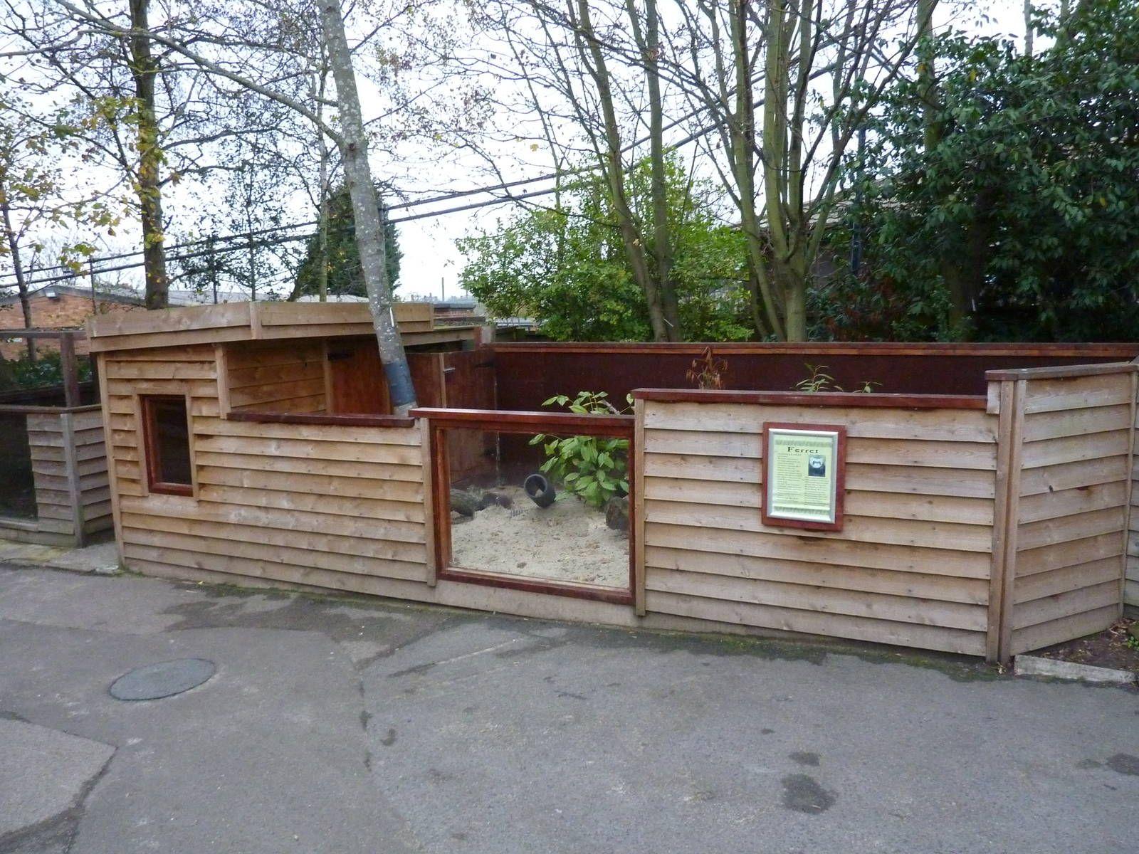 Outdoor Dog House Plans Ferret enclosure | Fer...