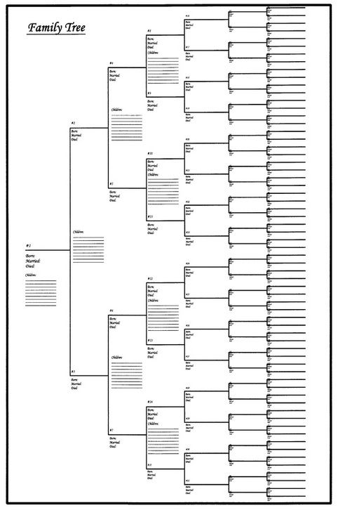 Online Shoppers Universe Family Tree Chart 18x24 Genealogy
