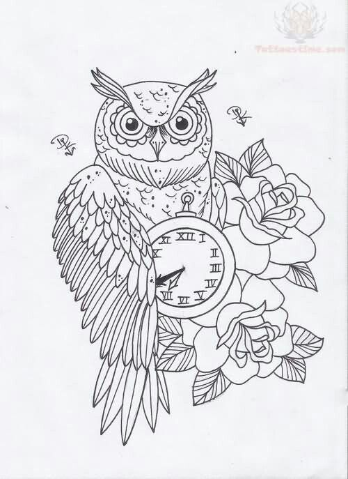 Sketsa Tato Lukisan Hewan Burung Hantu Sketsa
