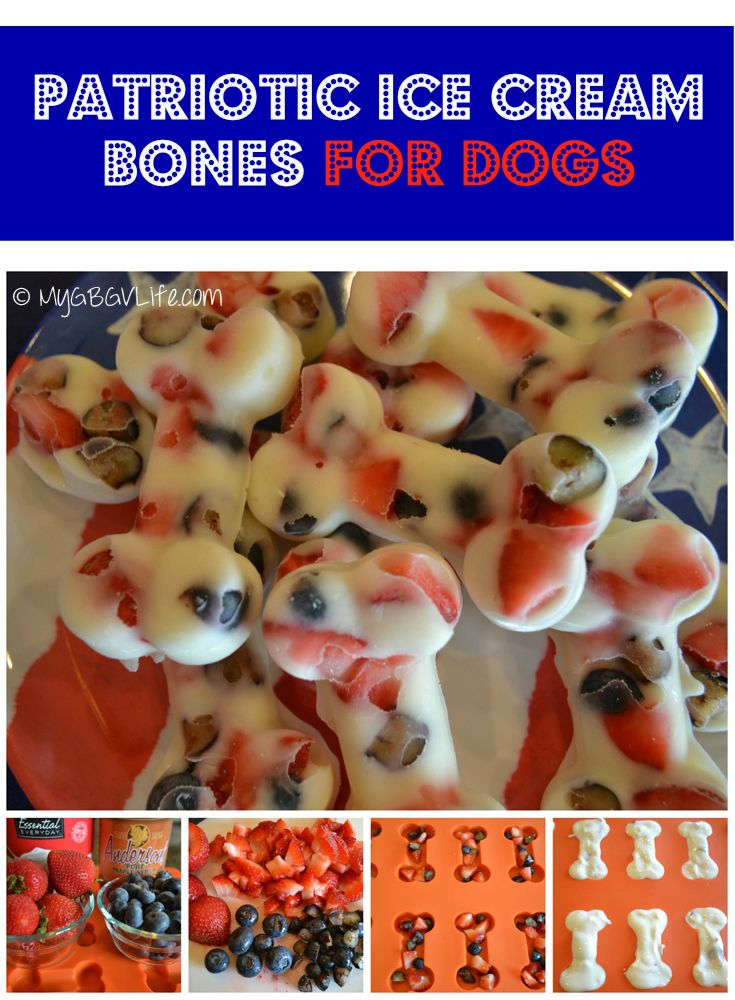 My GBGV Life | Patriotic Ice Cream Bones for Dogs - healthy #4thofJuly snack