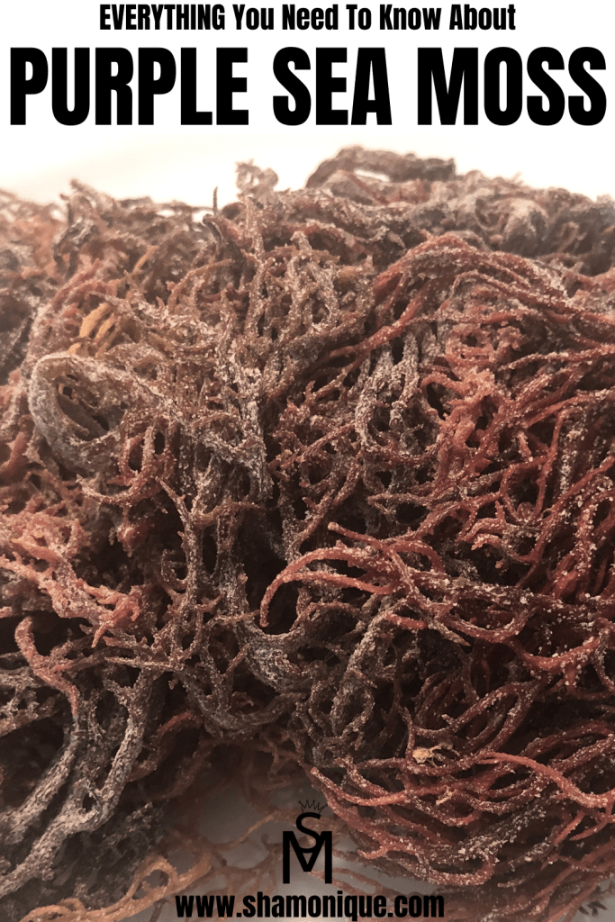 Purple Sea Moss Everything You Need To Know Shamonique Recipe Sea Moss Promote Healthy Digestion Moss