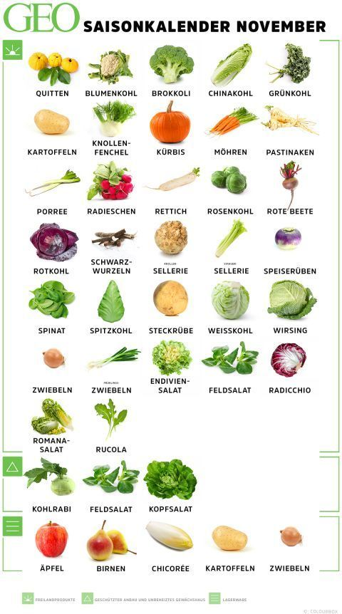 Saisonkalender November: Obst & Gemüse #obstgemüse