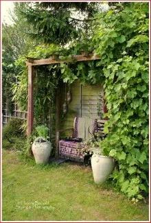 Sony dsc in 2020 Garden nook, Outdoor gardens, Garden design