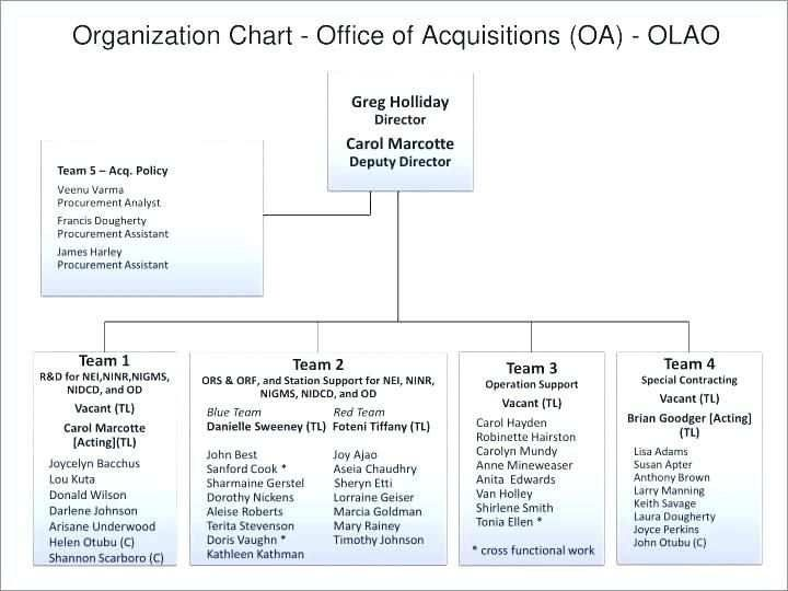 organization chart excel template download