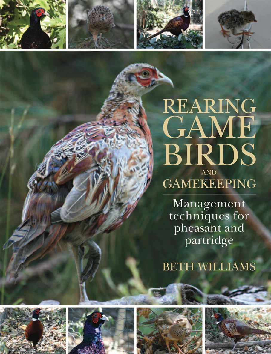 rearing game birds and gamekeeping by beth williams quiller
